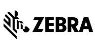 Zebra Qatar